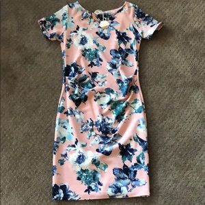 Pinkblush Floral Maternity Dress
